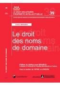 Le droit des noms de domaine (IRPI N°39)